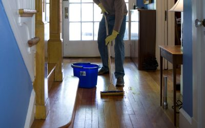 photo 1581578949510 fa7315c4c350 400x250 - CARPET CLEANING GUIDE FOR HOMES WITH PETS