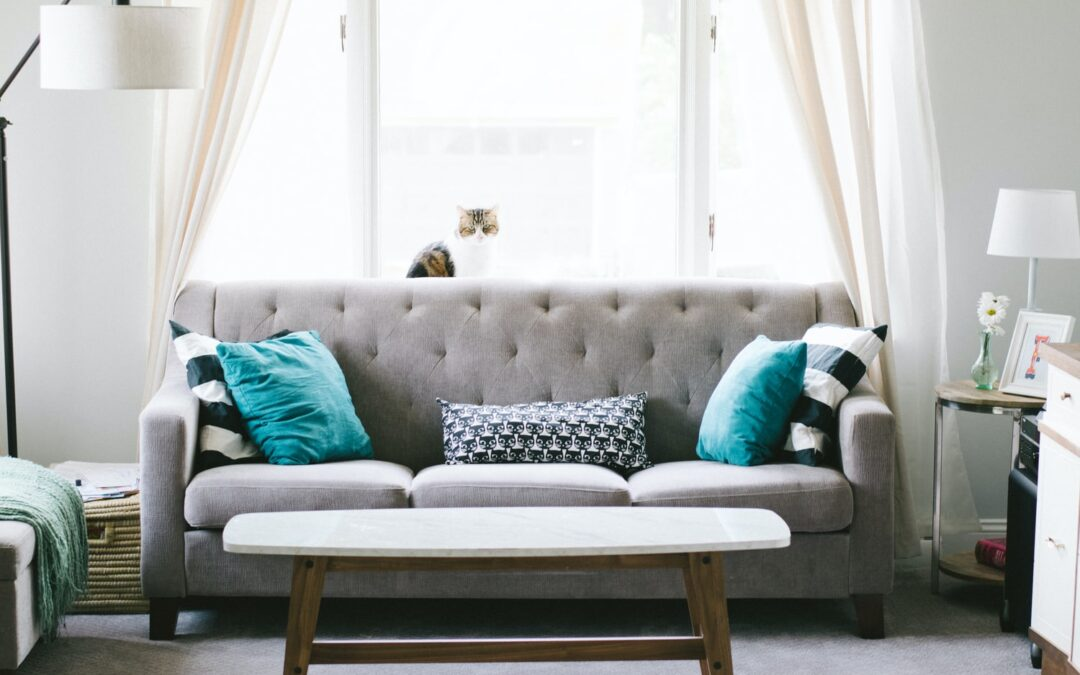 Upholstery Cleaning Perth and Bibra Lake