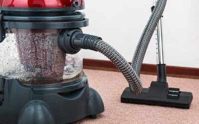 pexels pixabay 38325 400x250 - CARPET CLEANING GUIDE FOR HOMES WITH PETS